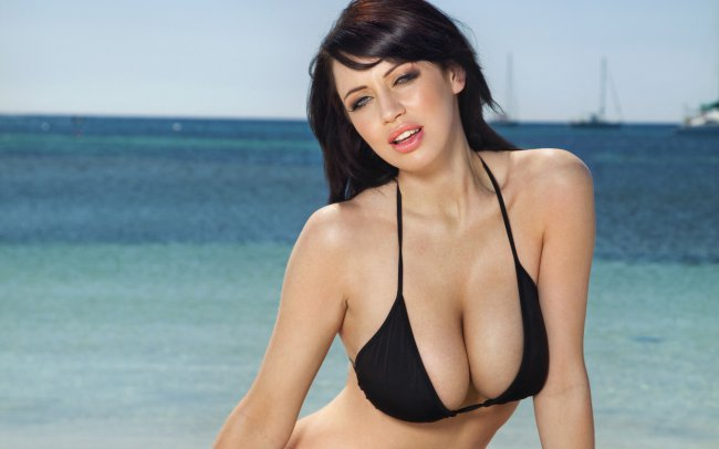 Sophie Howard / ���� ������