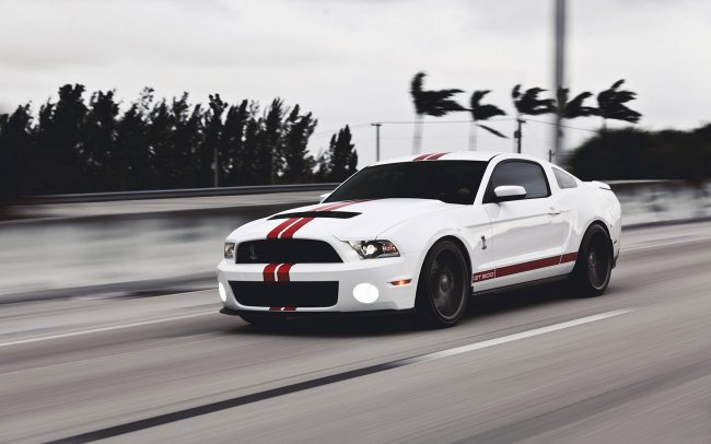 ����� Ford Mustang � �������� ��������