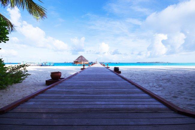 Пляжный берег