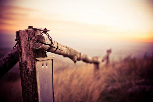 Природный деревянный забор на горе