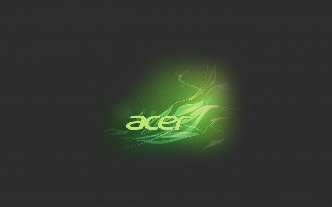 Acer Floral Green