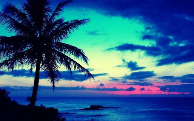 Тропический восход солнца