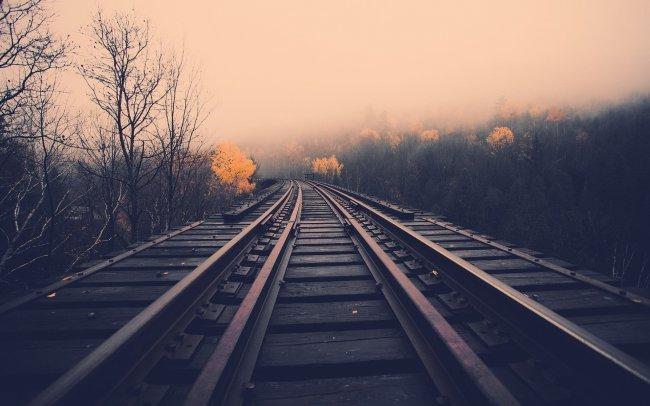 Железная дорога проходящая через лес