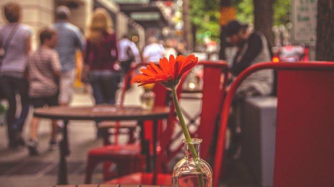 Красный цветок в вазе