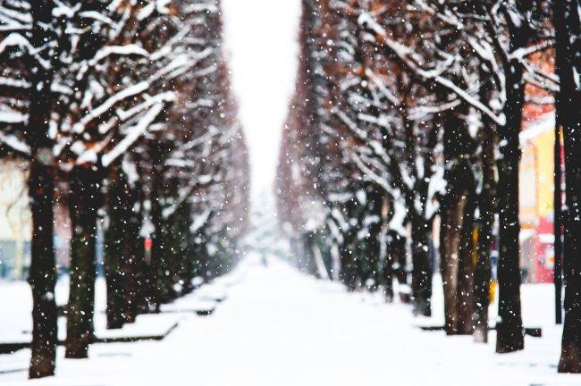 Снег в городе Каунас