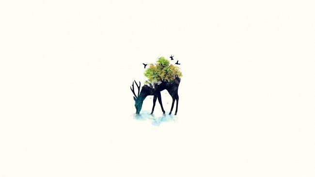 Красивая иллюстрация от Буди Сатрия Квана