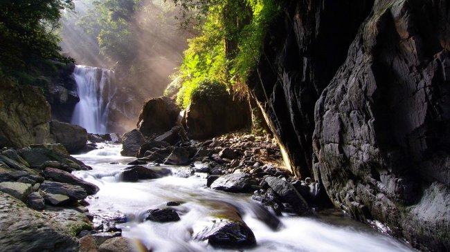 Водопад в большом лесу