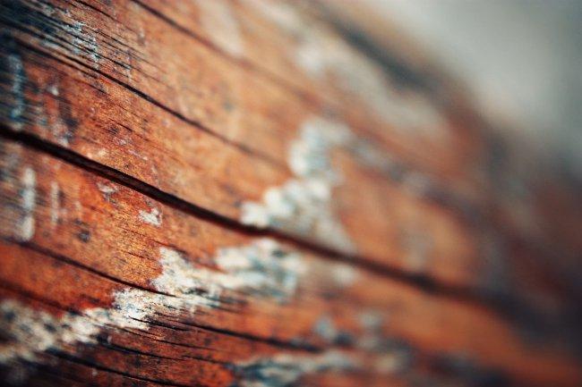 Деревянная поверхность
