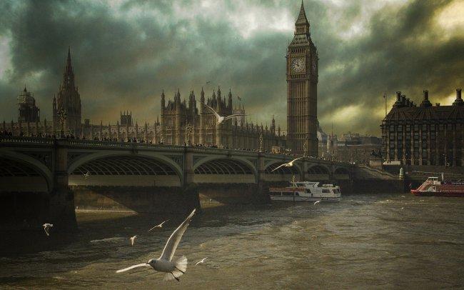 Чайки у Вестминстерского моста в Лондоне