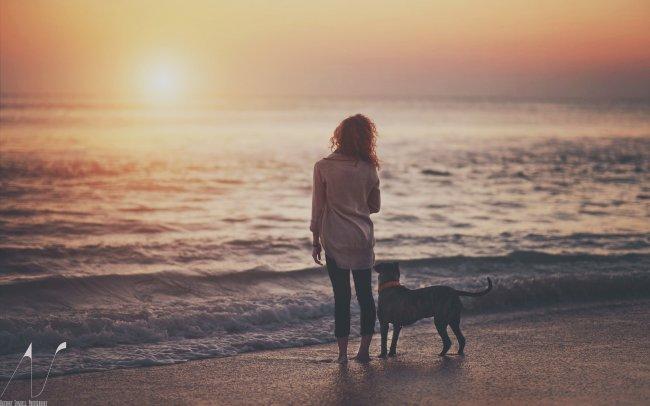 Девушка с собакой у моря