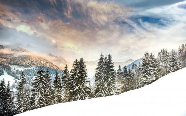 Снег в Швейцарский горах