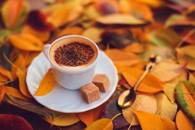 Чашка кофе с пенкой и шоколадом