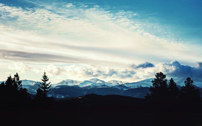 Силуэт деревьев на фоне снежных гор