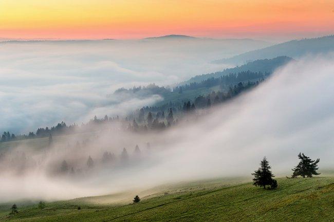Туман над склонами гор