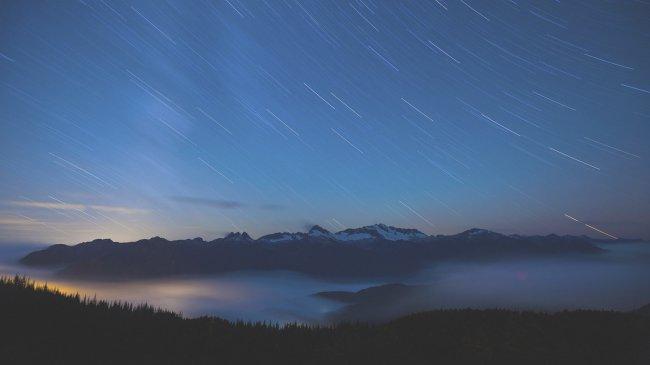 Ночной лес и горы на фоне звездного неба