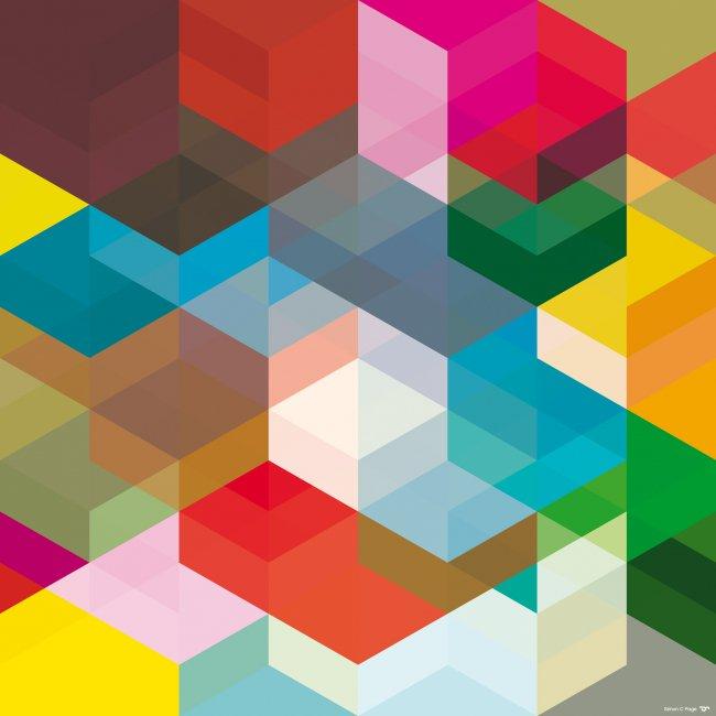 Разноцветные параллелограммы