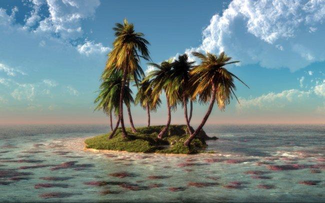 Пальмы на маленьком острове по среди океана