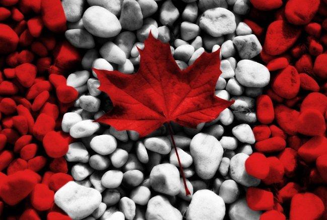 Канадский флаг в виде камней и кленового листа