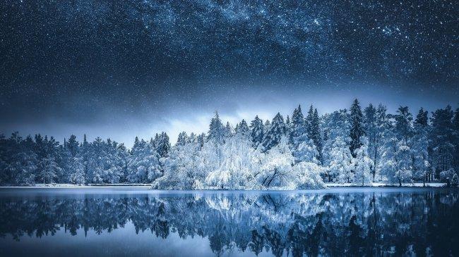 Покрытые инеем деревья на берегу зимнего озера