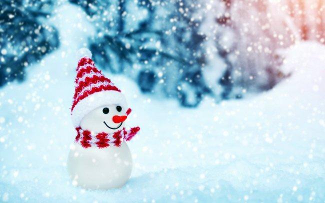 Маленький снеговик в лесу
