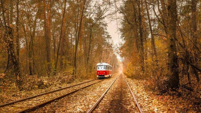 Трамвай в парке Пуща-Водица в Киеве