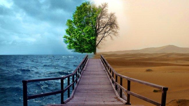 Мост разделяющий пустыню и море