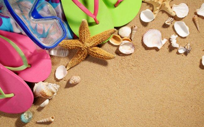 Морская звезда и ракушки лежат на песке