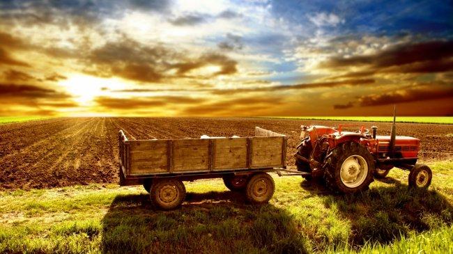Трактор с прицепом на поле