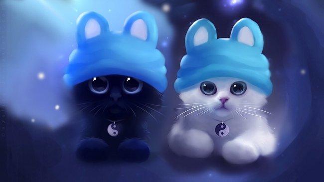 Два котенка - черный и белый