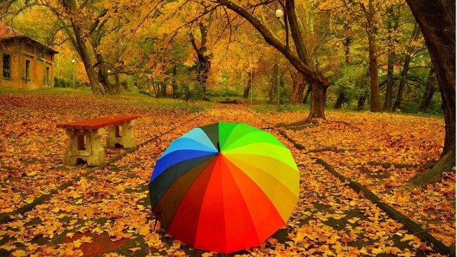 Разноцветный зонт лежит на аллее осеннего парка