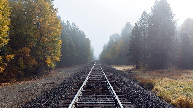 Железная дорога в лесу