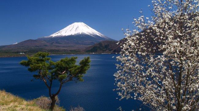 Япония остров Хонсю. Вид на вулкан Фудзияма.