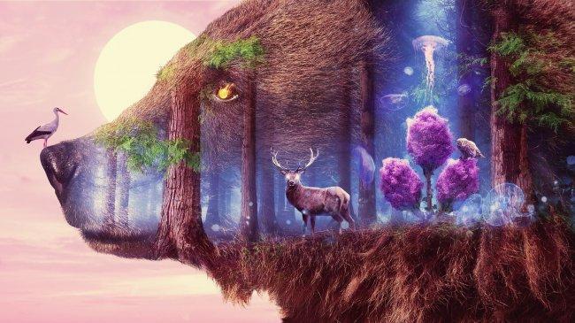 Мистическая дикая природа