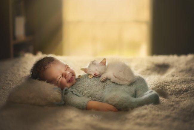 Спящие младенец и котенок