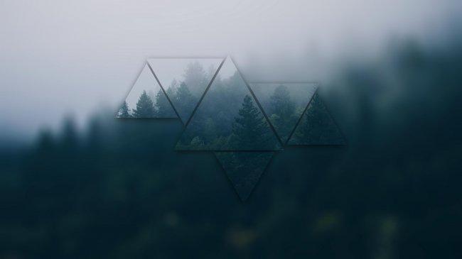 Хвойный лес в тумане с эффектом Polyscape
