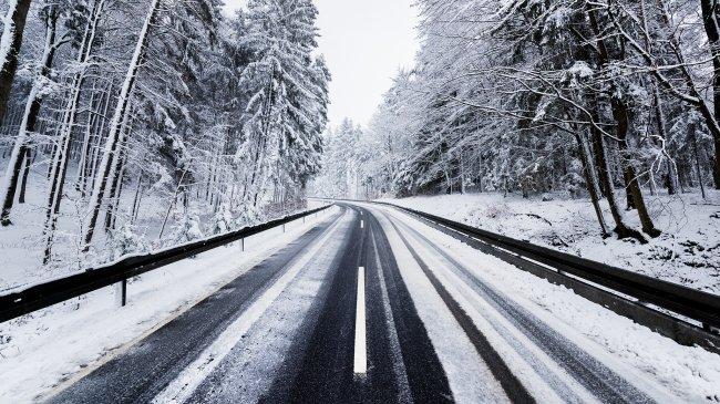 Дорога сквозь зимний лес
