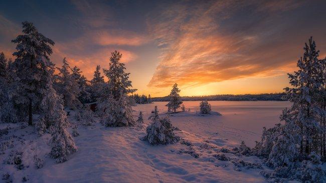 Заснеженый хвойный лес у озера Спериллен, Норвегия