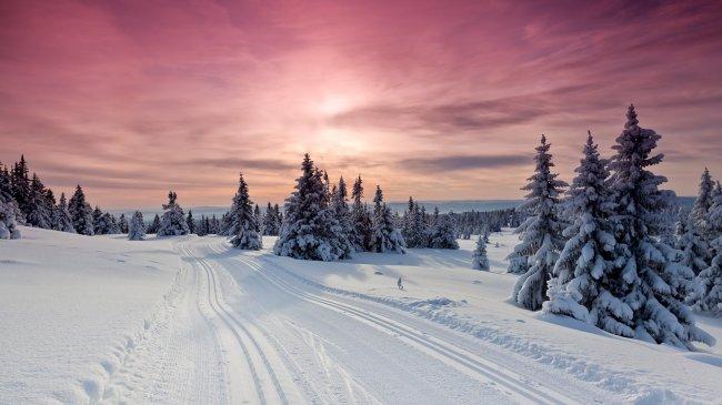 Трасса для беговых лыж на закате