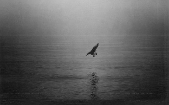 Second Wind by pishchanska