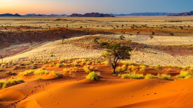 Пустыня Намиб в Южной Африке