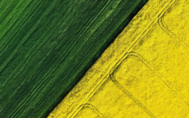 Вид с воздуха на поля для сбора урожая