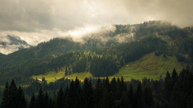 Альпийский вид в Клайнвальзерталь, Австрия